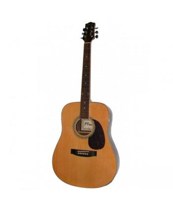 Chitara acustica Flame DG 400FG088-41 NT
