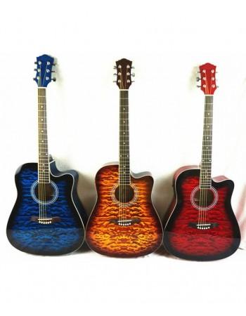 Chitara electro-acustica SG028CA Hemilton