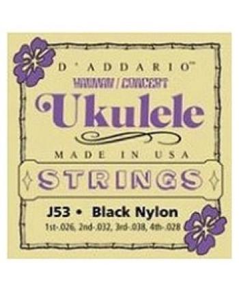 D`Addario J53 Concert Ukulele Set