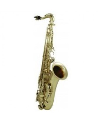 Roy Benson Bb-Tenor Saxophon TS-302 Pro Series