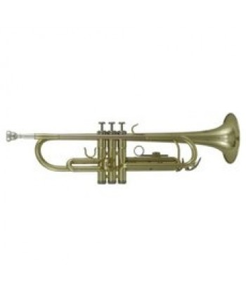 Roy Benson Bb-Trumpet TR-101